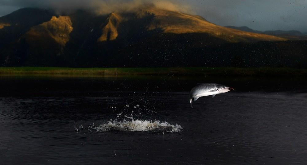 Extraordinary fishing experiences