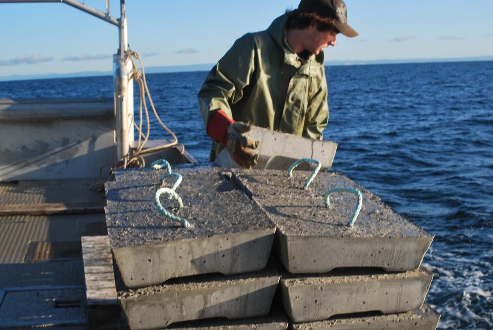 Artificial reef installation