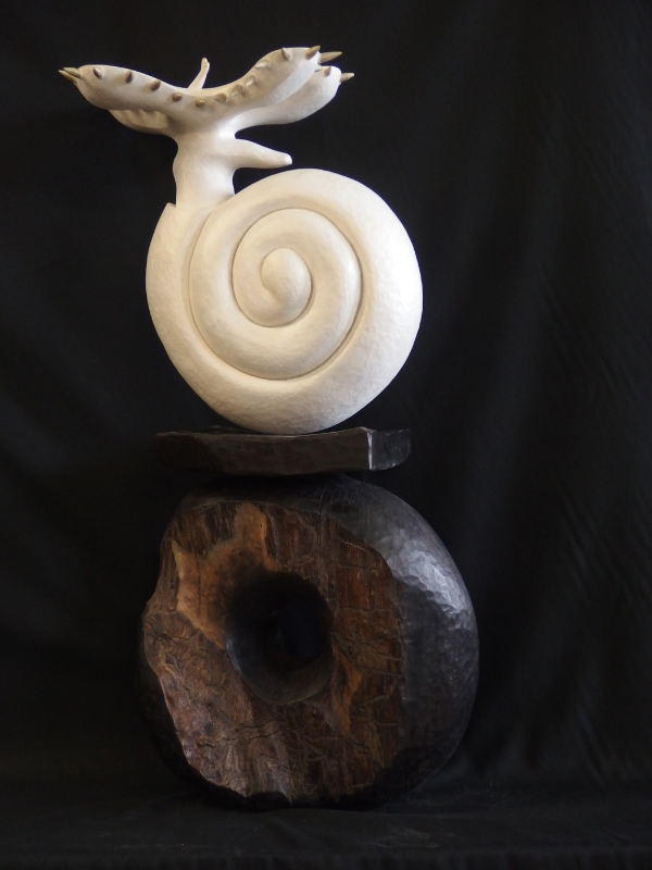 Larval form of marine snail drifts freely in the ocean before settling on the bottom.               Alder on charred alder base.