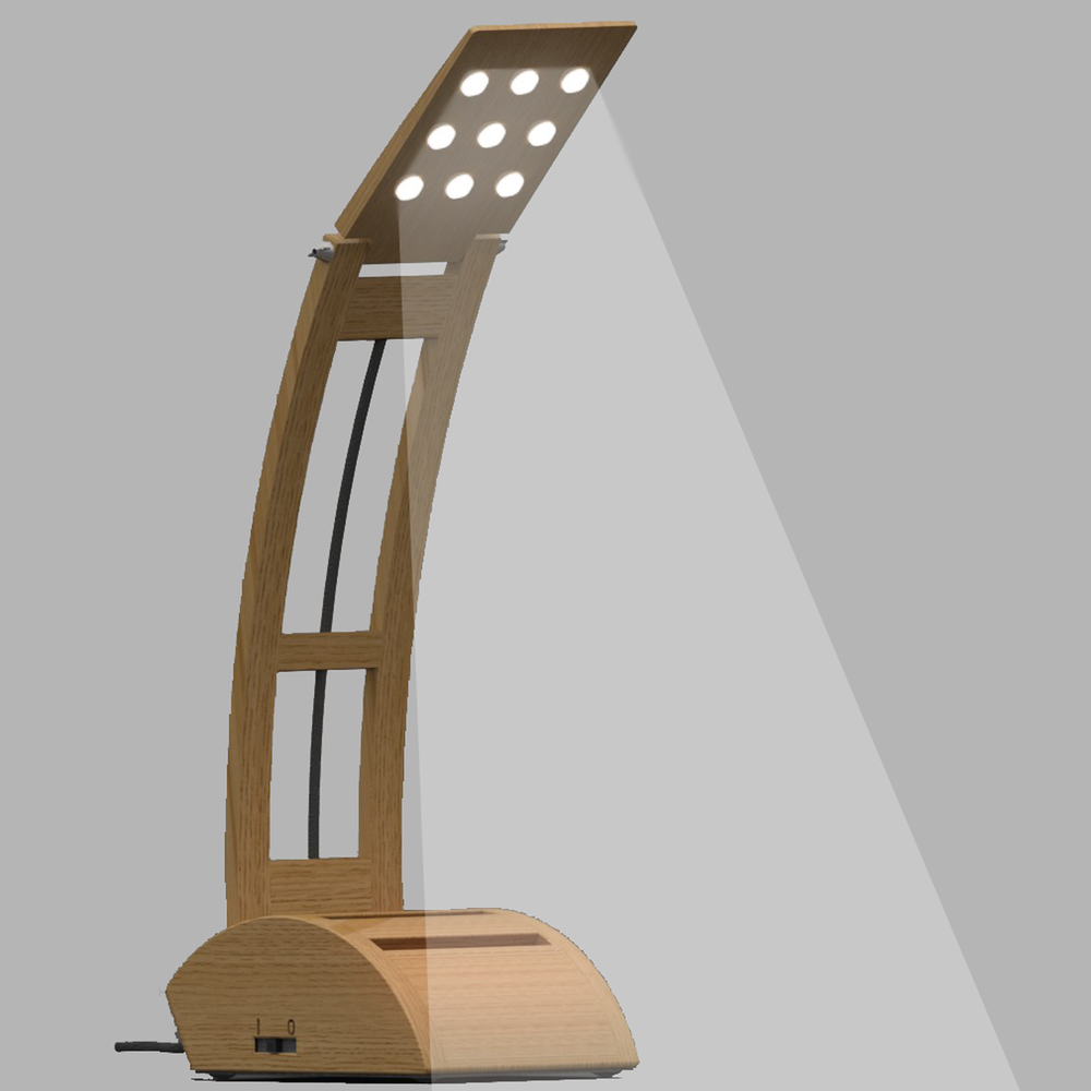 Sustainable Lamp