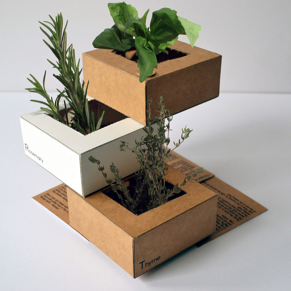 herb 2.jpg