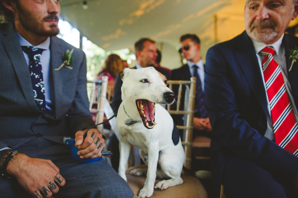 derbyshire-wedding-photographer-october-november-41.jpg