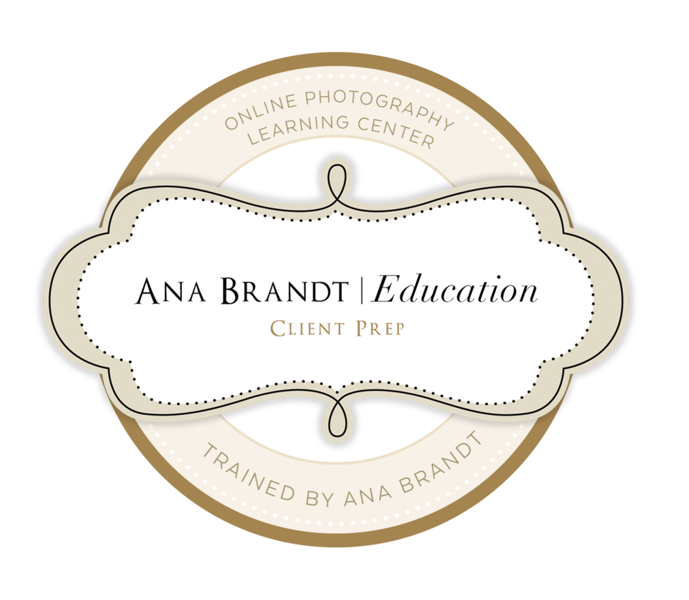 Ana Brandt Training logo.png