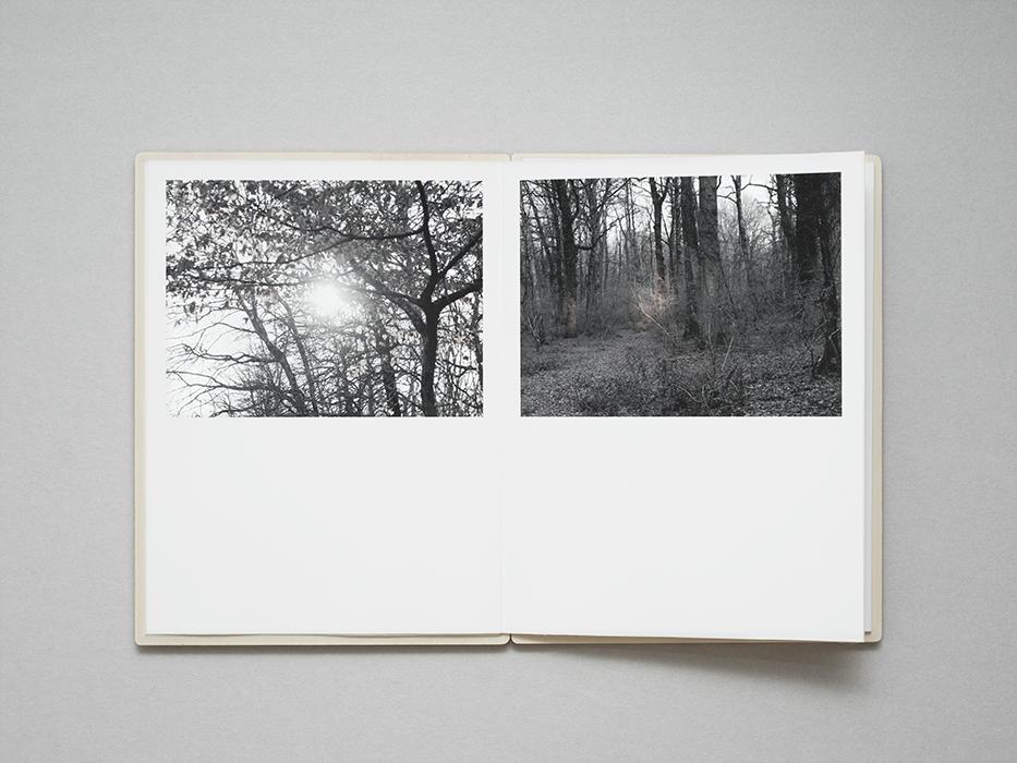 tree_016.jpg