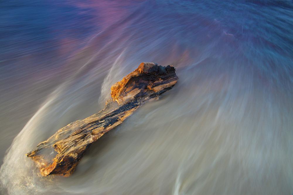 log n water.jpg