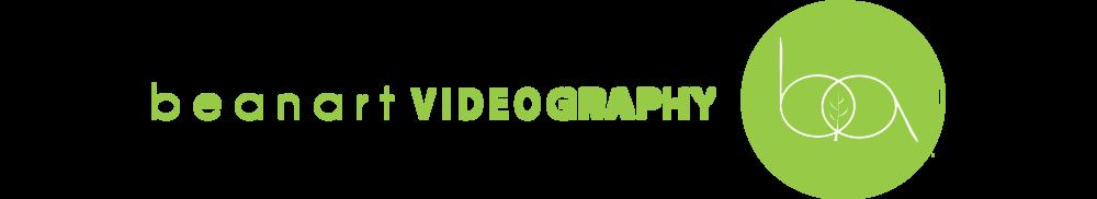 videoLogoforsite.png