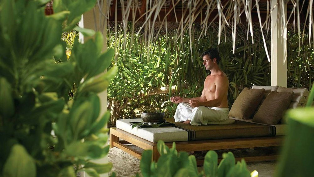 Click on the image about to find out more about our luxury wellness trips in India.