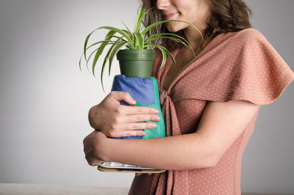 Needy-Plant-Embrace2.jpg
