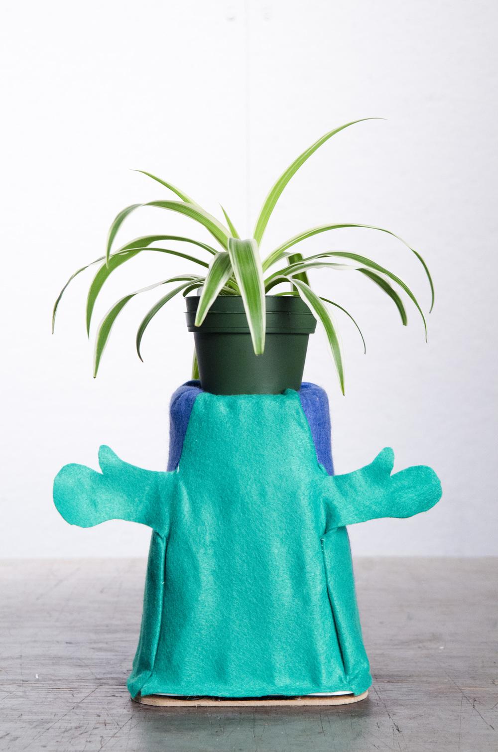 Needy-Plant2.jpg