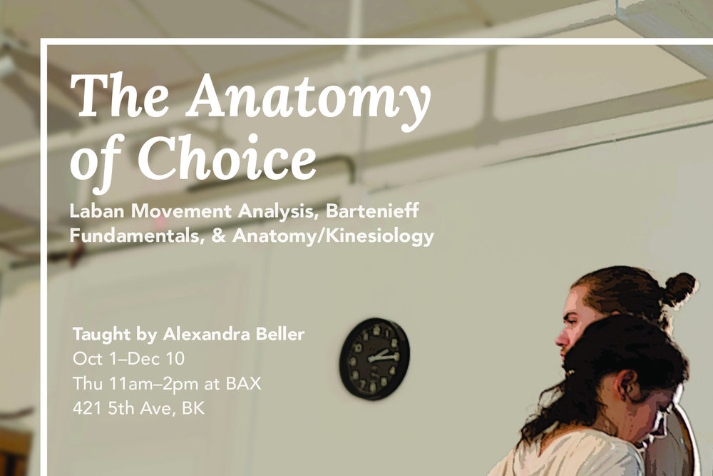 Anatomy of choice postcard2017.jpg