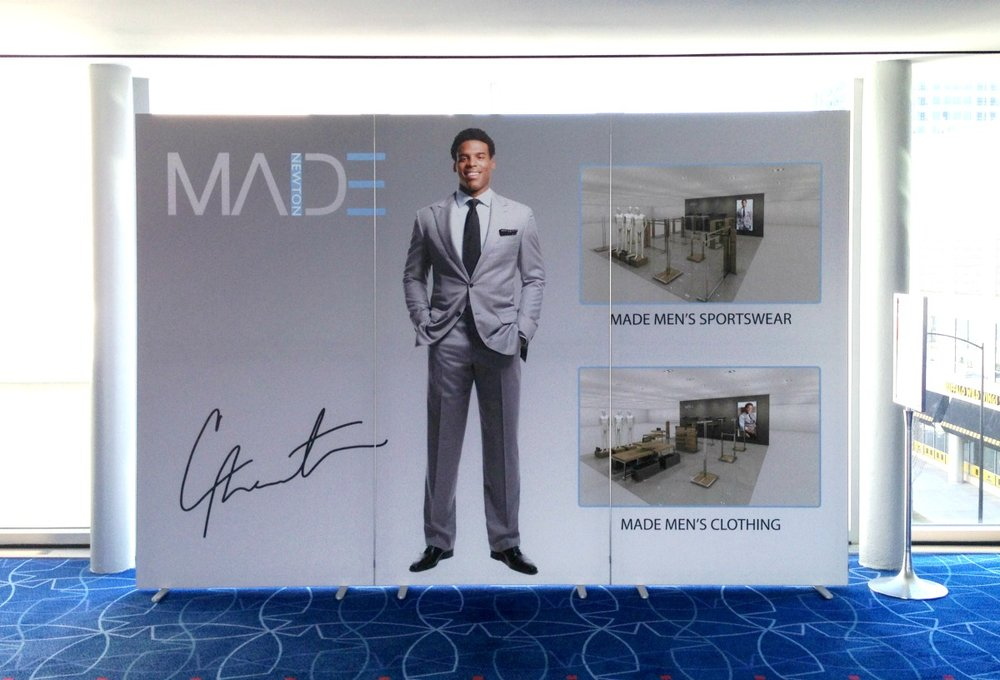 Cam Newton Freestanding Tri-panel Matrix Frame