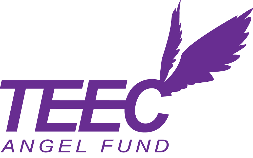 TEEC天使基金.png