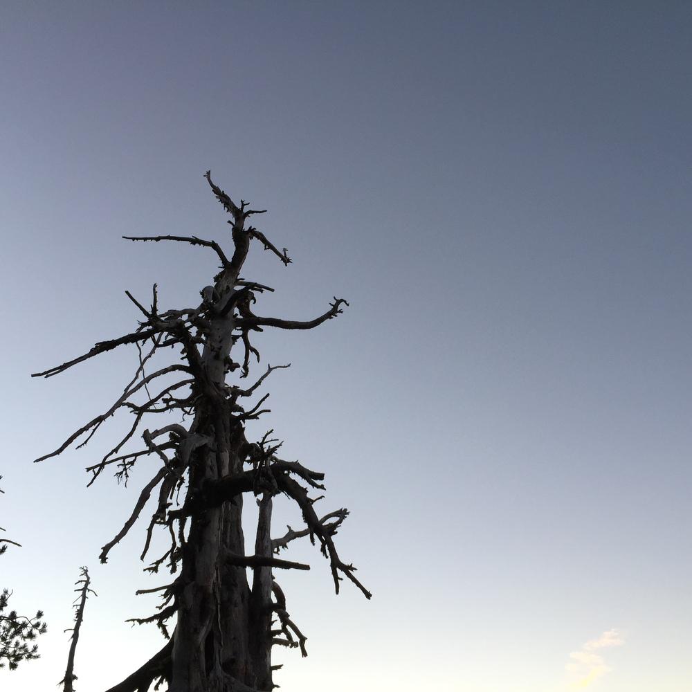 2014-10-05-07.07.58.jpg