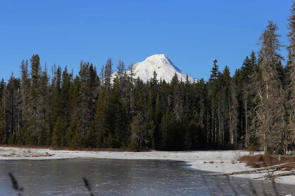 Mount Hood looms above the lake