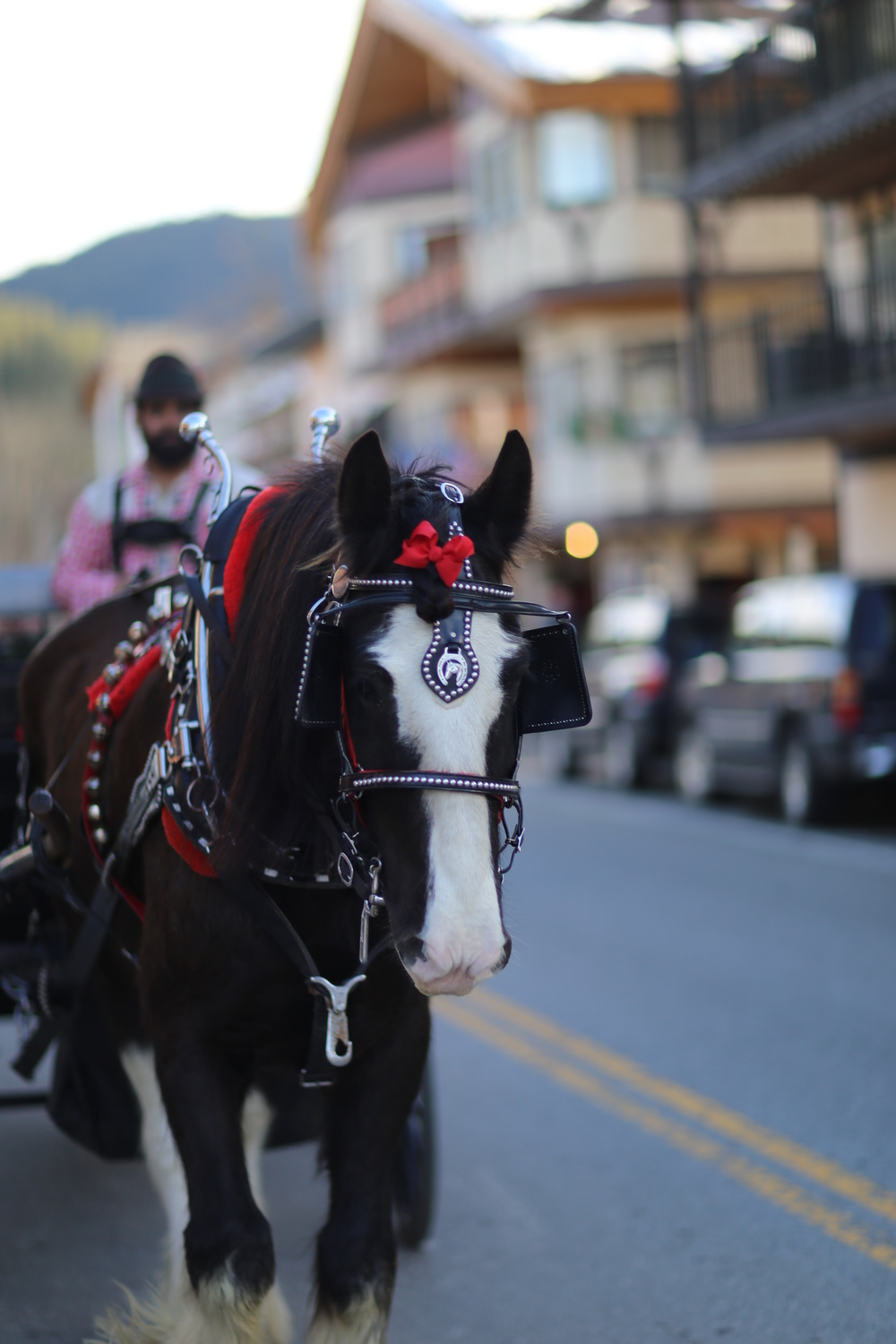 Carriage rides on Front Street, Leavenworth