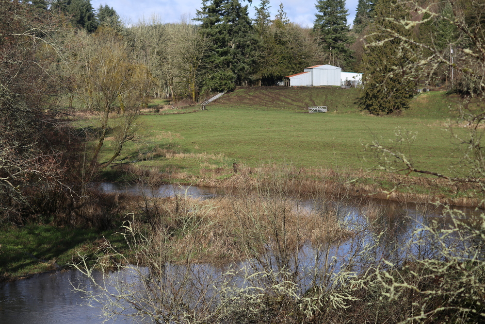 Farm Along a Tributary to the Cowlitz River