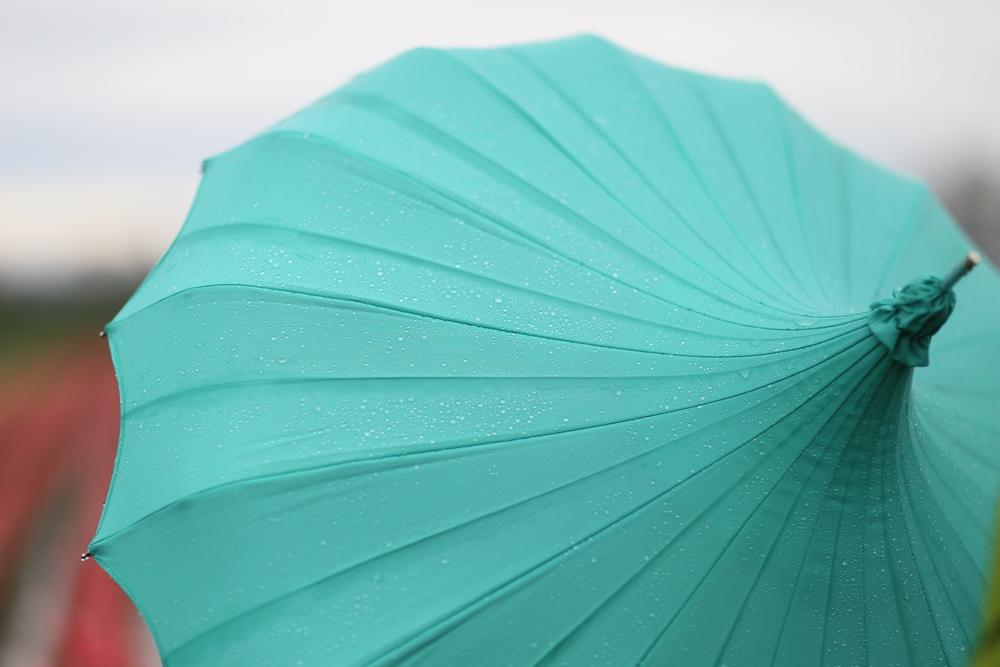 Umbrella in the drizzle