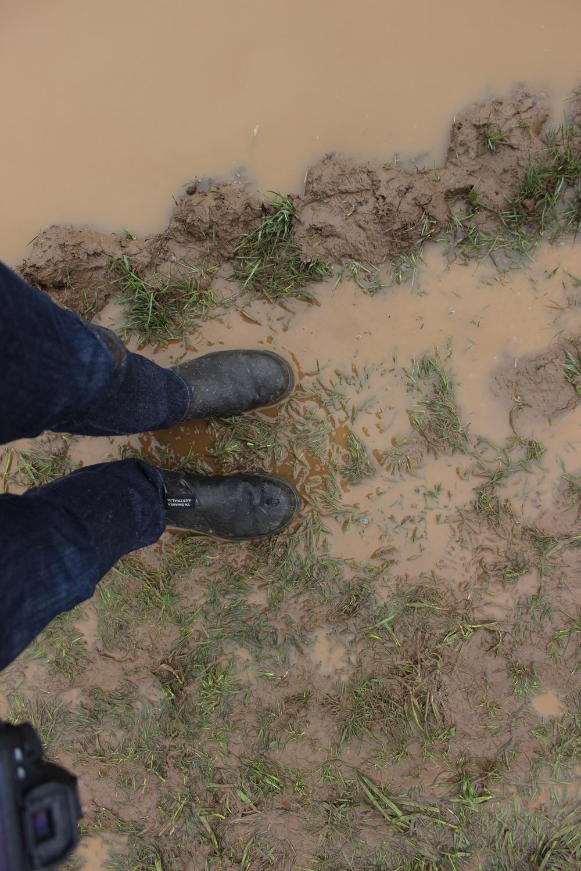 Muddy morning!