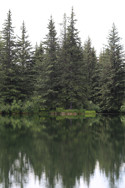 Warm Lake, Alaska