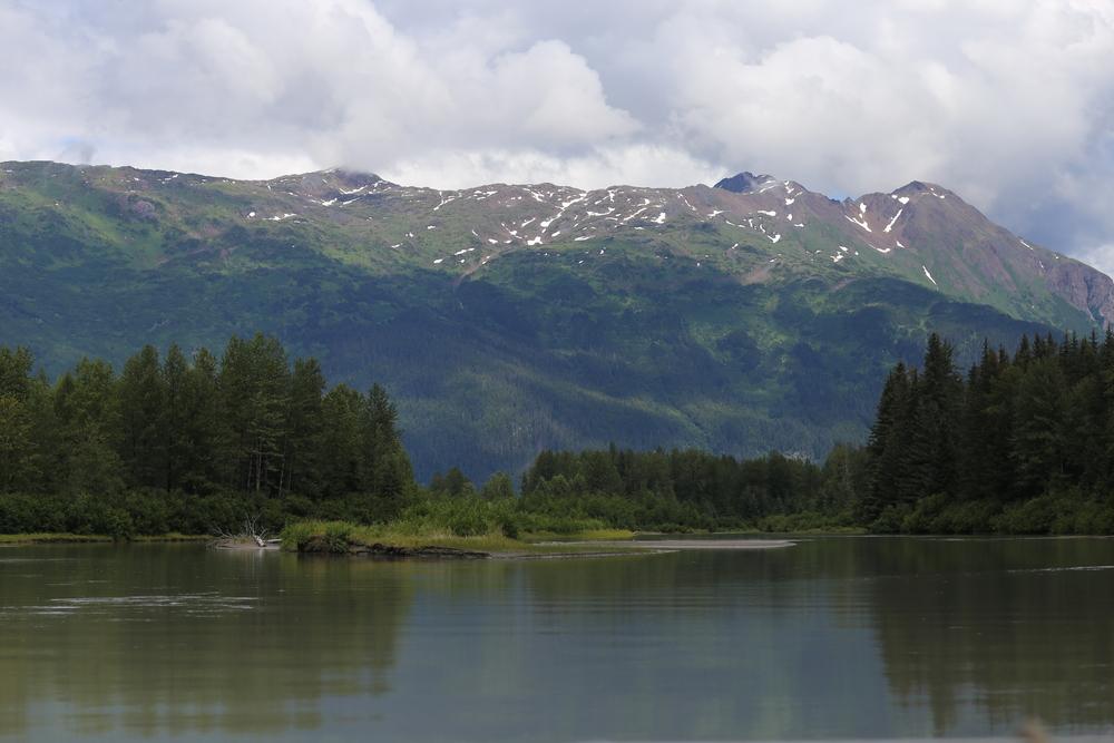 Views along the Taku River near Warm Lake