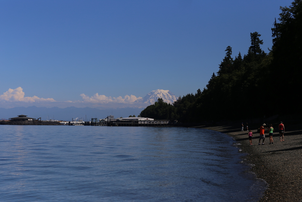 Owen Beach with Mt. Rainier in the background