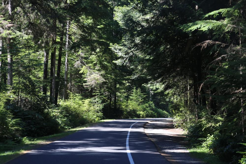 Five-Mile Drive