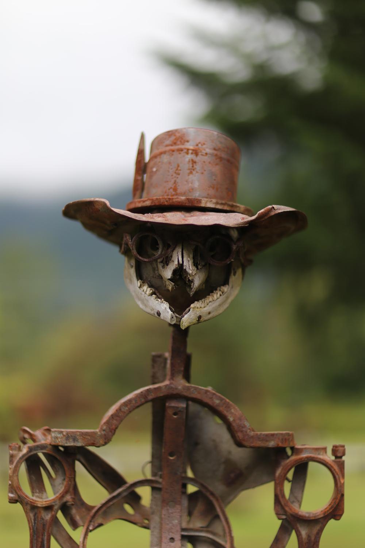 Iron gunslinger