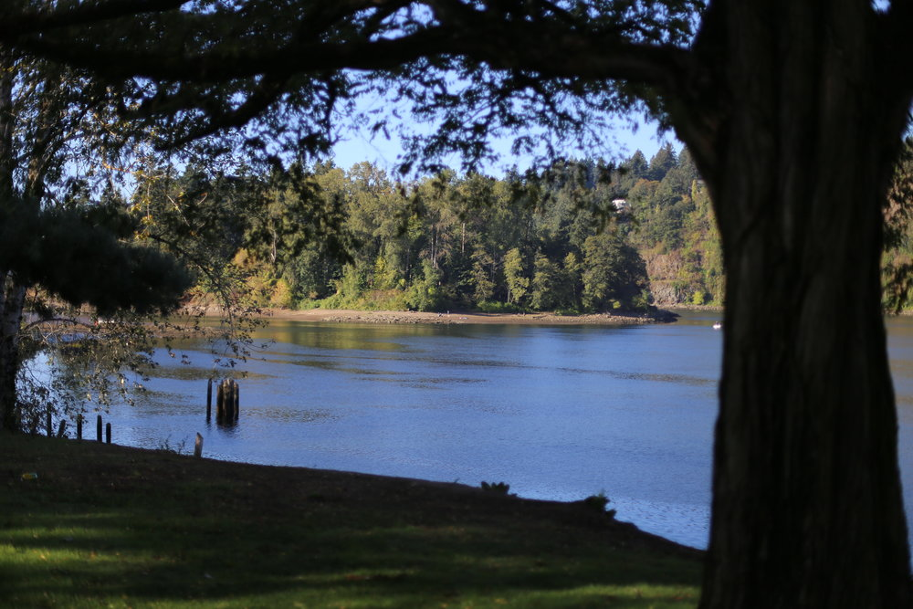 Our shooting location, Milwaukie Riverfront Park, along the Willamette River
