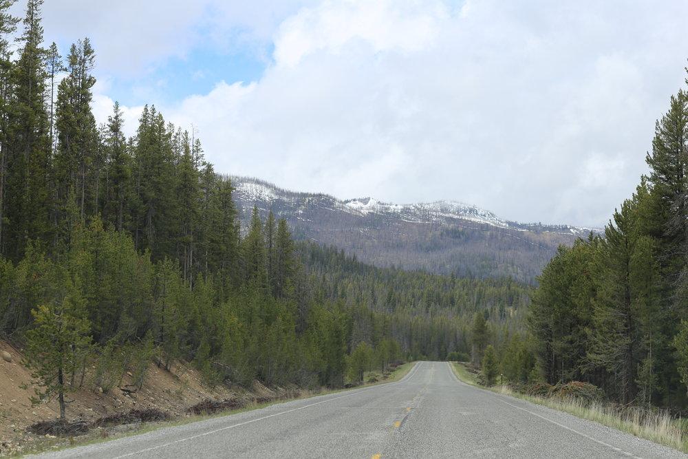 Views along Highway 21