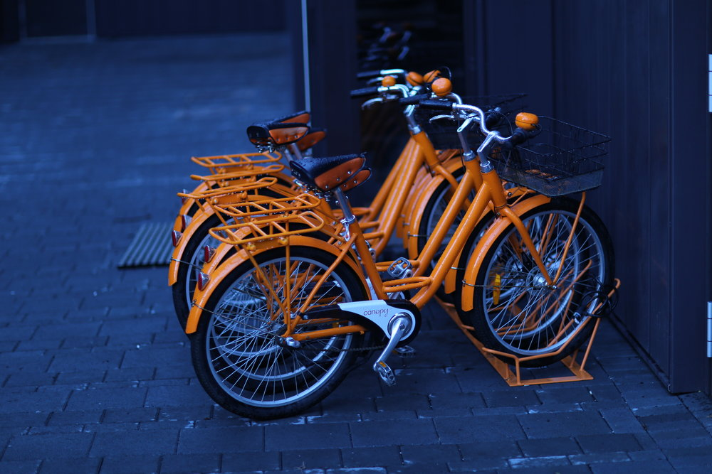 Canopy rental bikes
