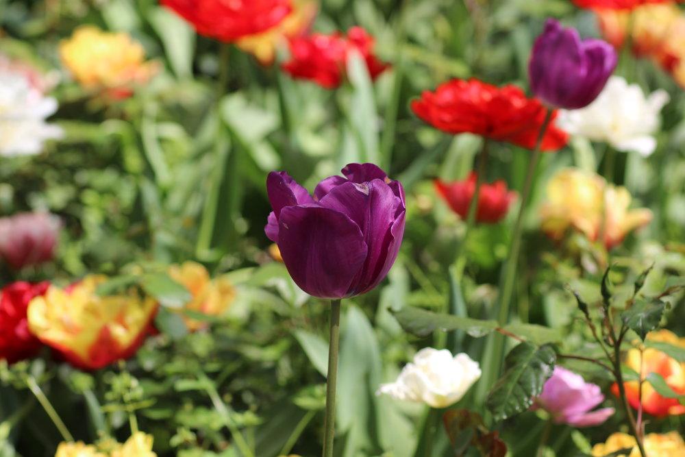 2014-04-17 03.31.12.jpg