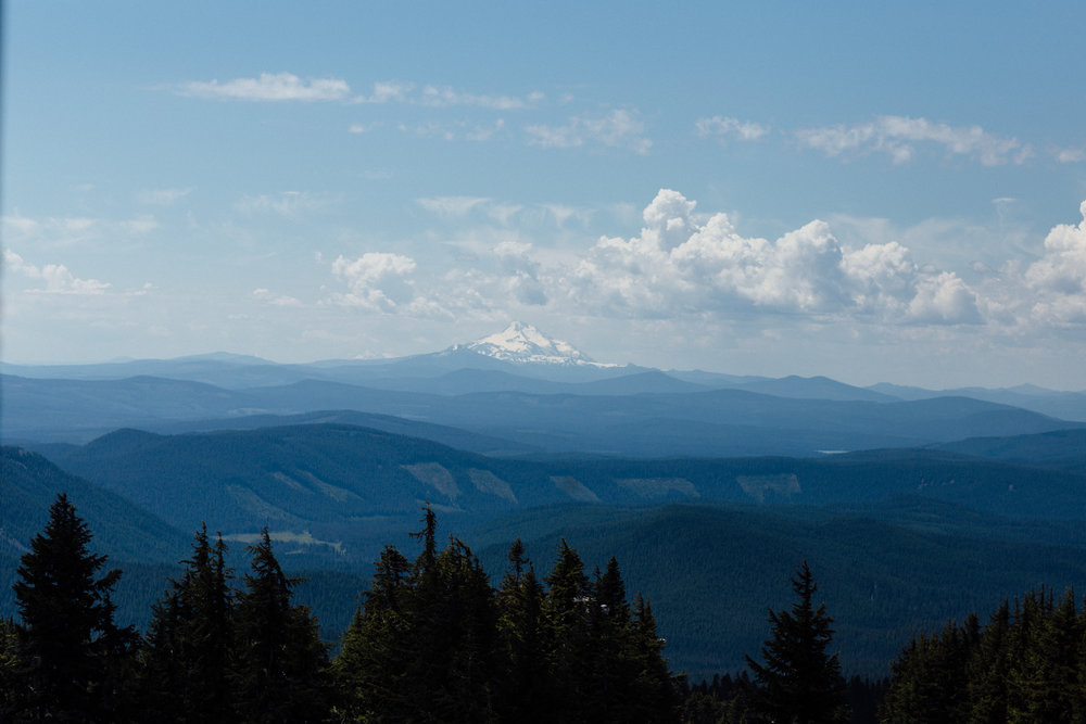 View of Mount Jefferson from Timberline Lodge