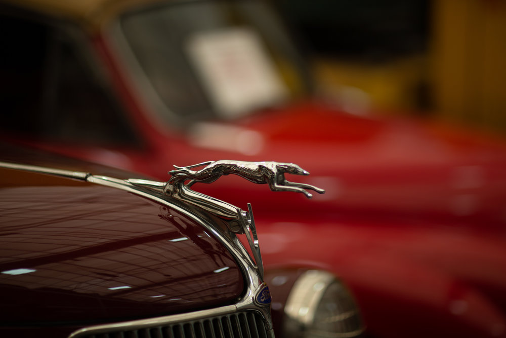 Ford greyhound ornament
