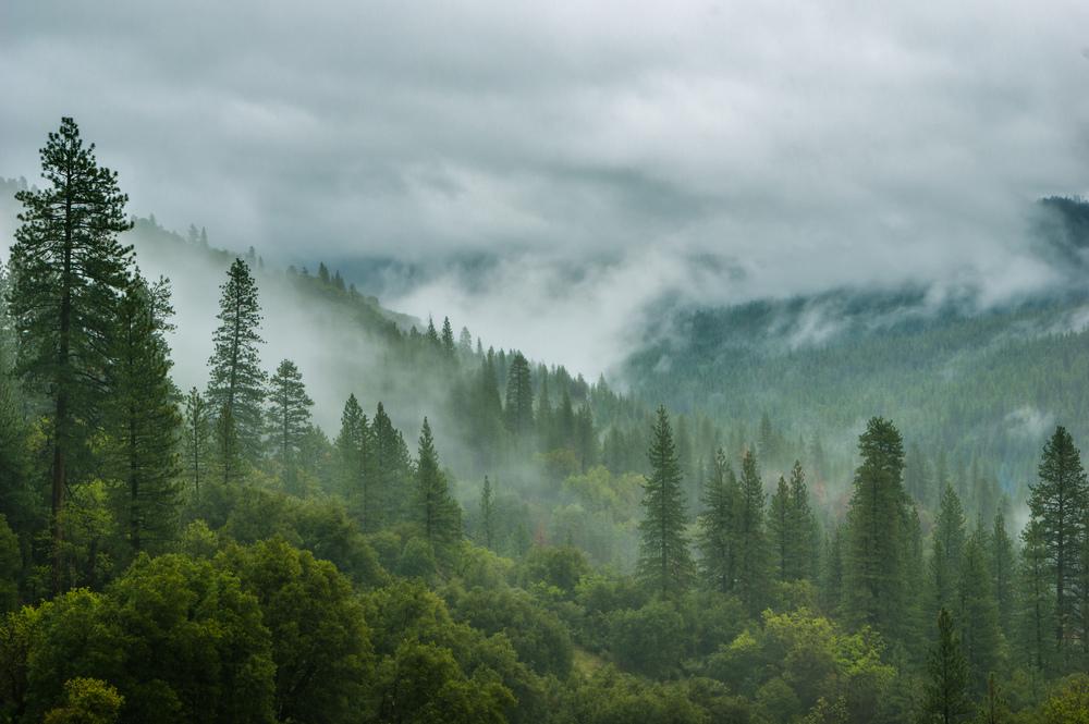 Auf dem Weg in den Yosemite Nationalpark
