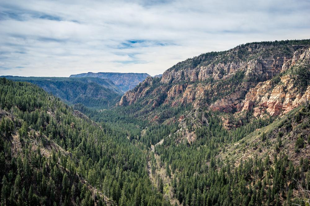 Blick in den Oak Creek Canyon