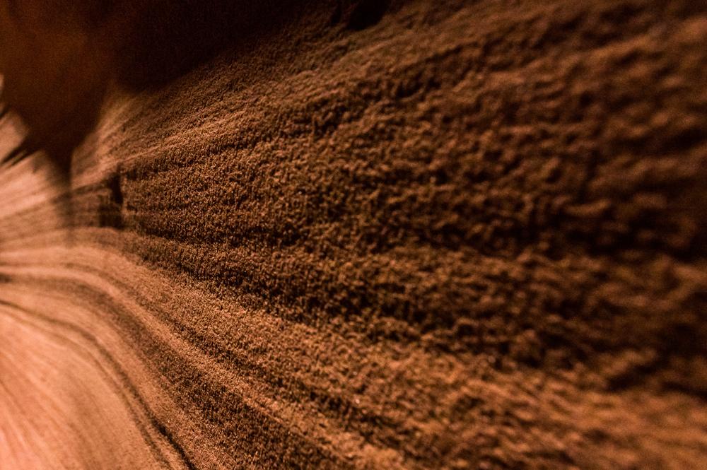 Die Wände des Canyons sind entgegen der Erwartung keine glattgeschliffenen Steinwände sonder fühlen sich eher nach fest gepresstem Sand an.