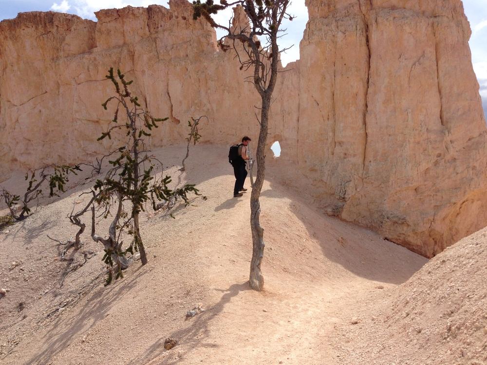 Fast überall gab es Motive zu finden. Bryce Canyon ist extrem fotogen.