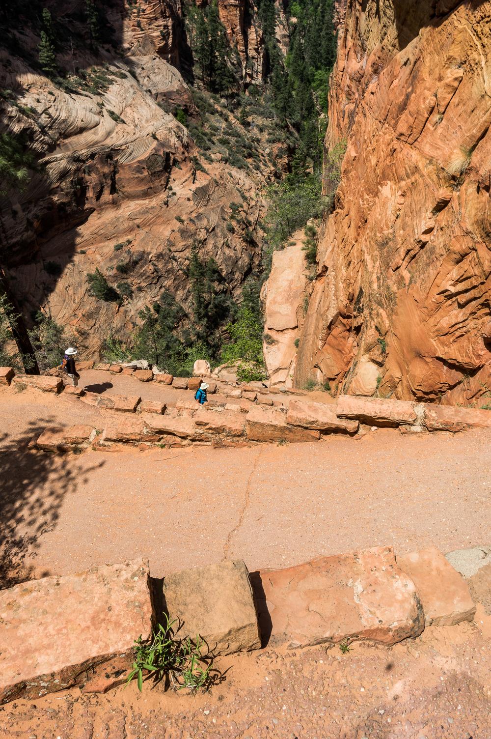 Walter´s Wiggles ist eines der steilsten Stücke des Weges. In 21 Kehren überwindet man auf engstem Raum etliche Höhenmeter.