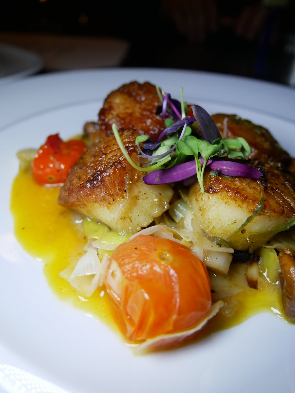 Hand-picked diver scallops with butternut squash purée