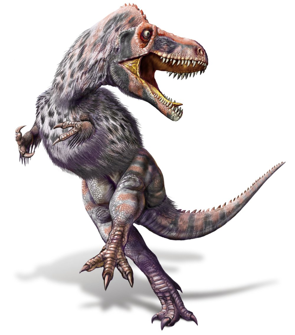 T. rex feathered juvenile