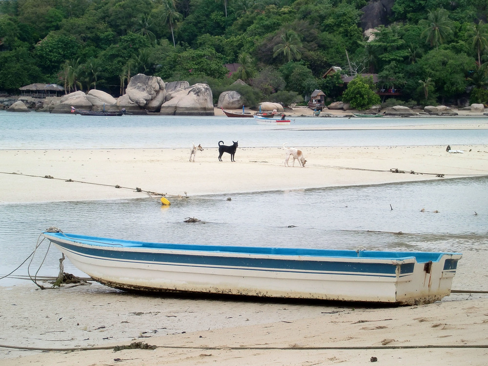 Thailand_2012_063.JPG