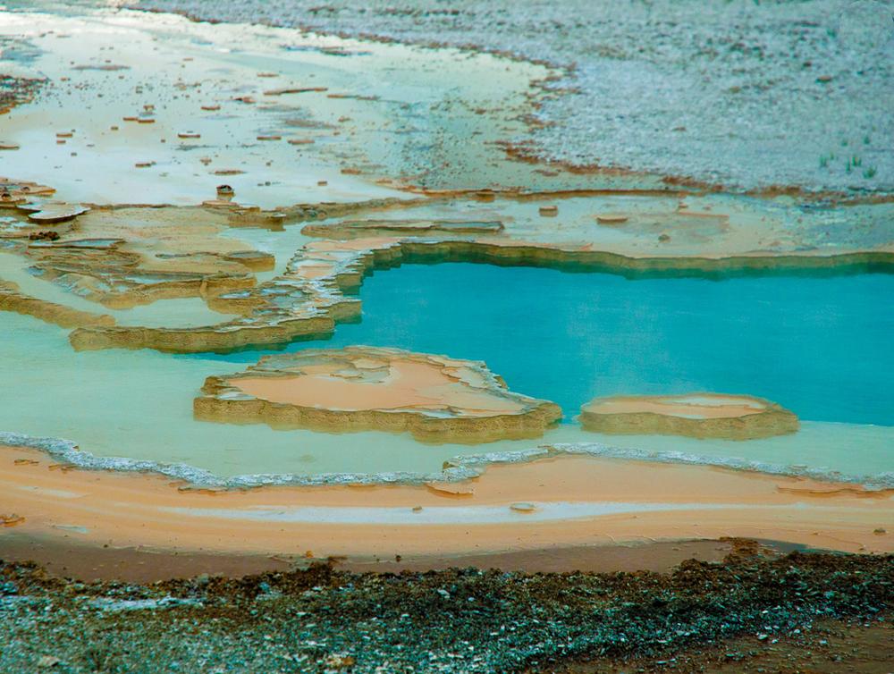 Beach Spring - Yellowstone National Park