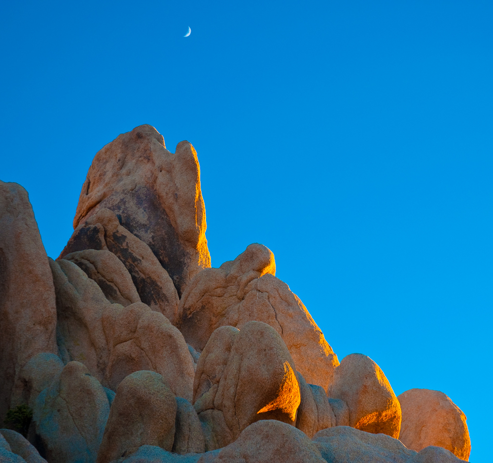 Moonrise - Joshua Tree National Park