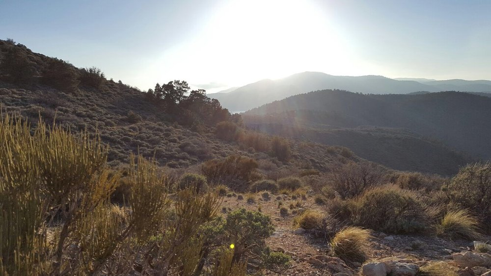 Pacific Crest Trail Sunset.jpeg