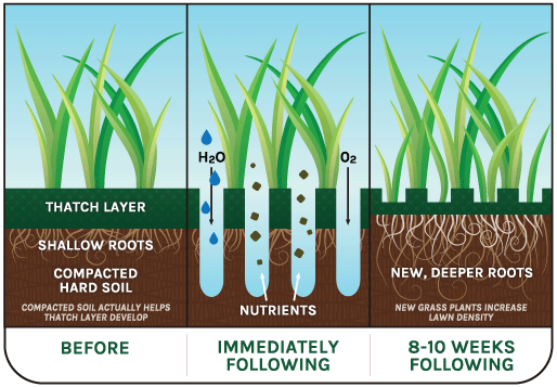 ...and Wait - Aeration Is Crucial,But Late Spring Offers Best Results