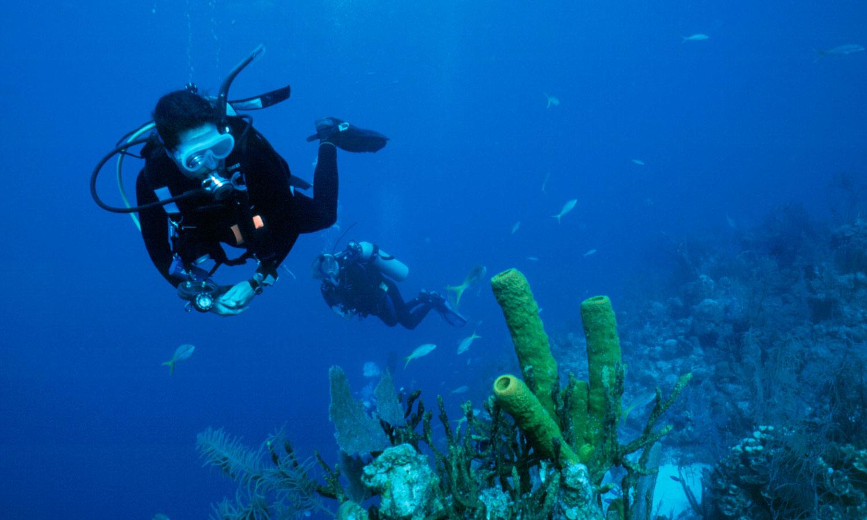 Certification Dive Travel Diverssea