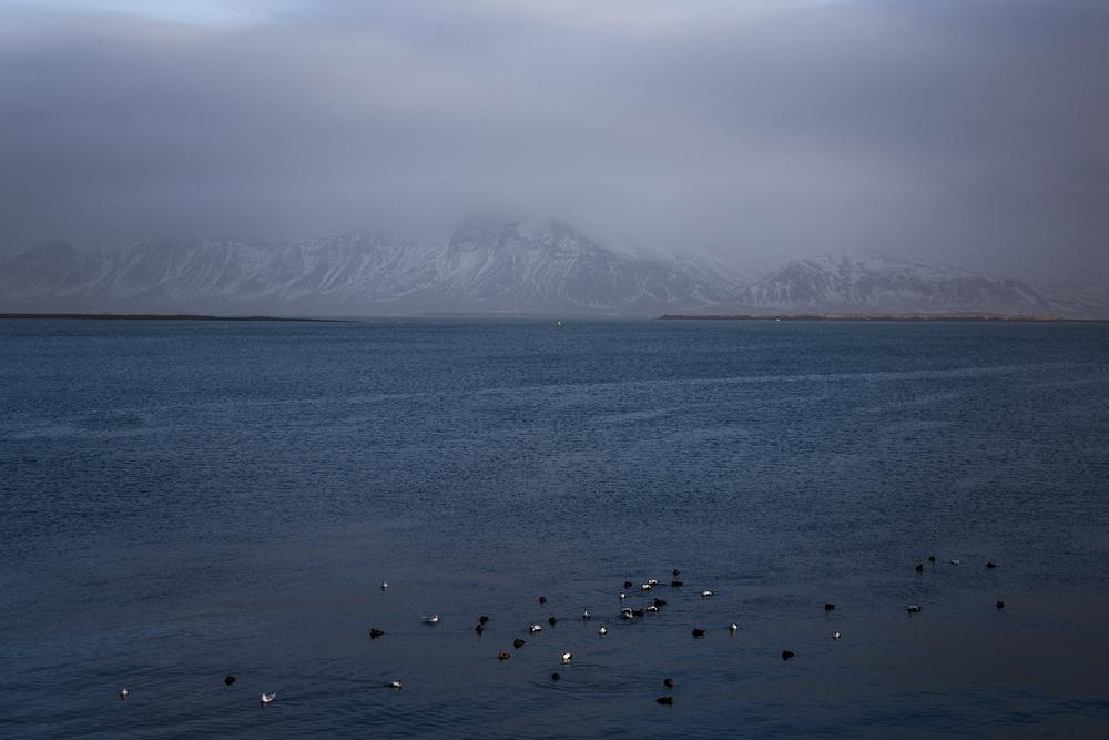 NCP_04022015_Iceland_0101.jpg
