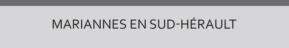 Réalisée pour le service Patrimoine de Communauté de communes Sud-Hérault dans le cadre du Réseau des Musées du territoire Sud-Hérault