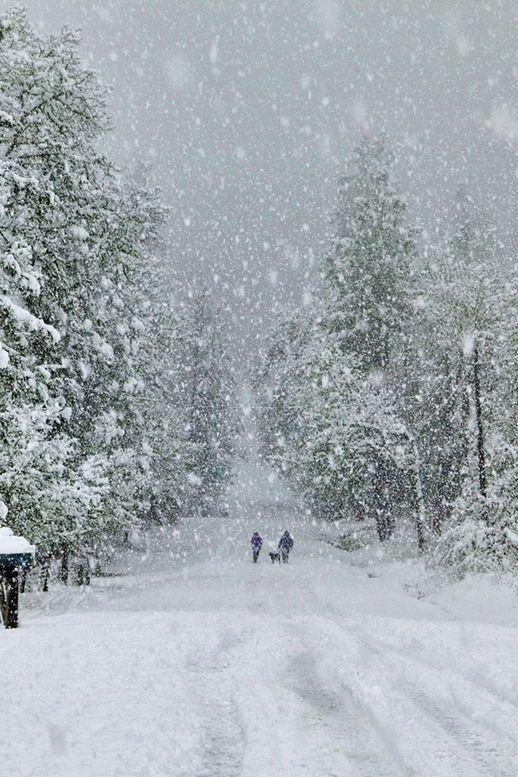 Winter18.jpg