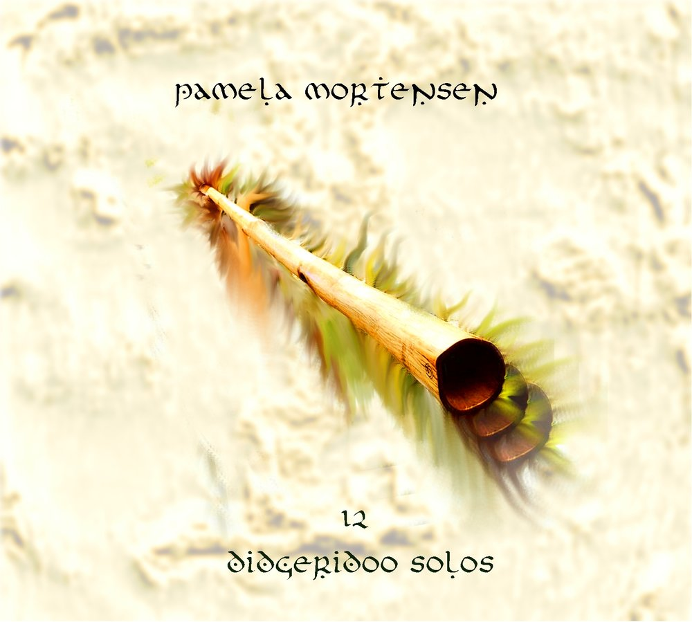 11 didegridoo solos front cover.jpg